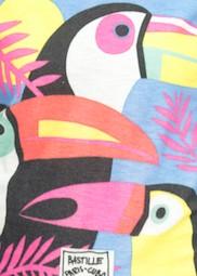 Papagajo