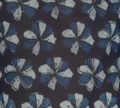 FE1 - Fiore blu
